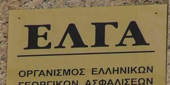 Ενημέρωση για την αντιχαλαζική προστασία ζήτησαν από τον ΕΛΓΑ, οι Αγροτικοί σύλλογοι Νάουσας, Σκύδρας και Αλμωπίας