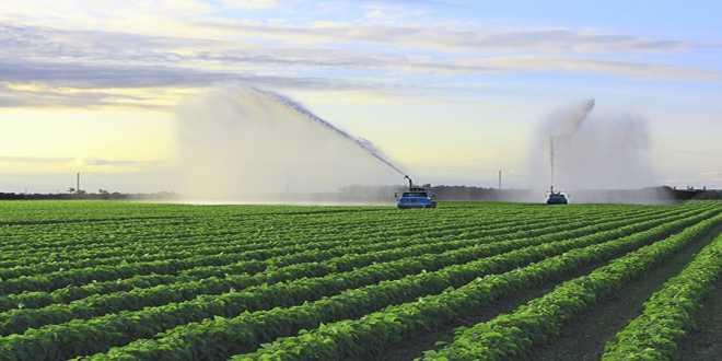 H λίστα με τα αγροτικά εφόδια που επιστρέφουν στο ΦΠΑ 13%
