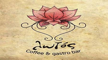 Λωτός Coffee & GastroBar, Γιαννιτσά