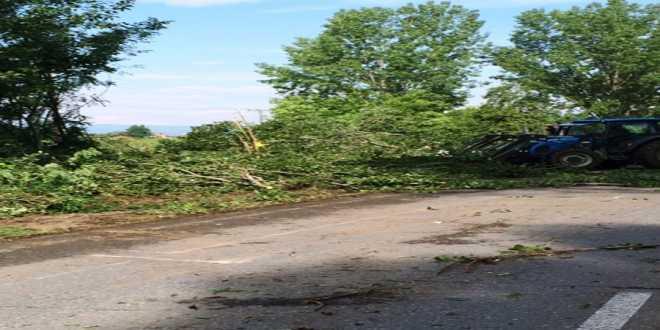 Π.Ε. Πέλλας: Ολοκληρώνεται η παρέμβαση σε σημεία του οδικού δικτύου που ελλοχεύουν κίνδυνο
