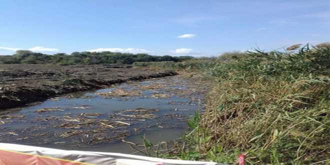 """Λίμνη Βεγορίτιδα: """"Να τιμωρηθούν όλοι όσοι ενέχονται στο σκάνδαλο της μόλυνσης της"""""""