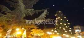 Άναψε το χριστουγεννιάτικο δέντρο στην πλατεία Γ. Γιώτα των Γιαννιτσών (foto-vid)