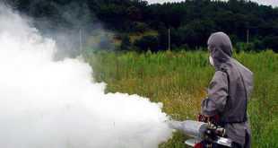 Στην Καρυώτισσα σοβαρό κρούσμα του ιού του Δυτικού Νείλου
