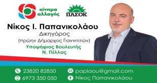 Νίκος Παπανικολάου, Υπ. βουλευτής ΚΙΝΑΛ: Ζητώ να πορευτούμε μαζί σε αυτόν τον αγώνα, με ήθος και αξιοπρέπεια